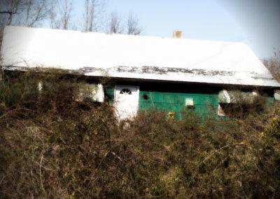 greenhouse_4893220